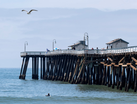Why is human DNA seeping into the sea near a Southern California pier?